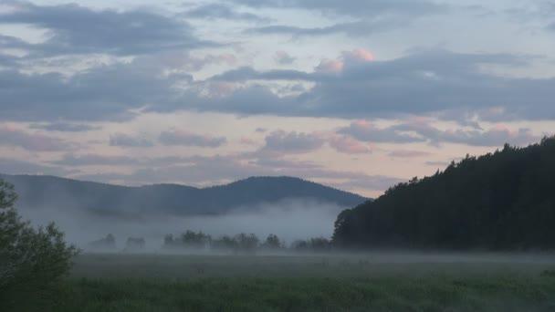 Mlhavé ráno, louka, Les na pozadí pohoří