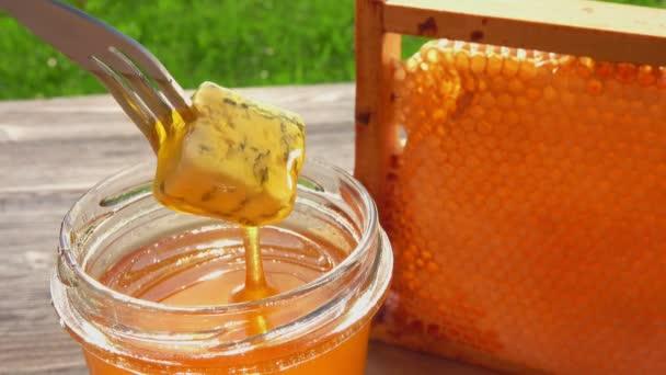 Kousek modrého sýra na vidličce se namočí do čerstvého medu ve skleněné nádobě