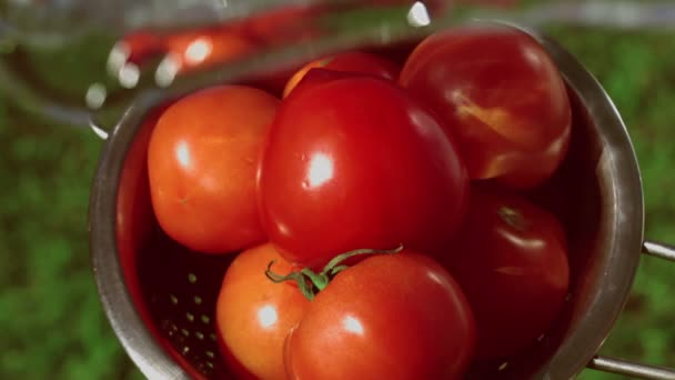 Reife Tomaten werden mit Wasserstrahl im Sieb gewaschen