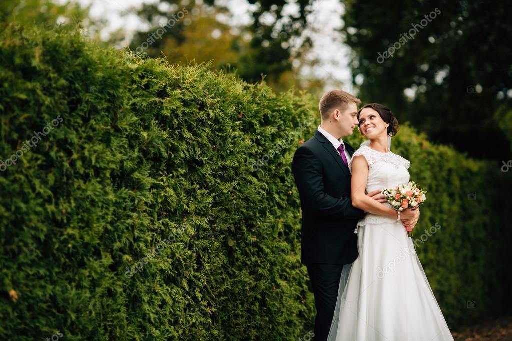 Жениха и невесты прогулка