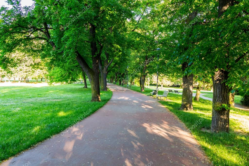 Park in Spring, Prague