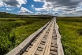 Dřevěný chodník v národním parku KRNAP