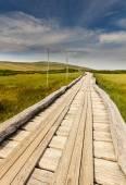 Fotografie Dřevěný chodník v národním parku KRNAP