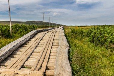 Wooden walkway in the national park Krkonose