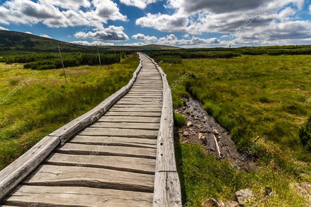 Wooden walkway in the national park Krkonose
