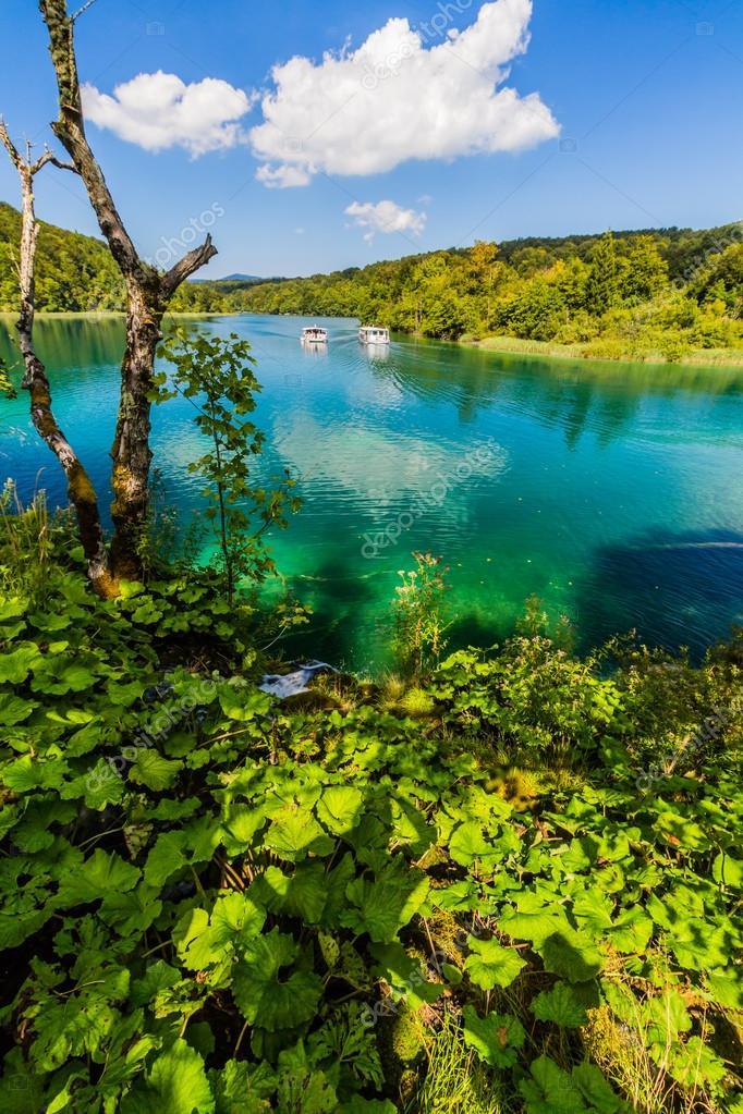 Virgin nature of Plitvice lakees national park, Croatia