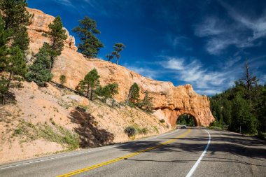 Dixie National Forest - Red Canyon