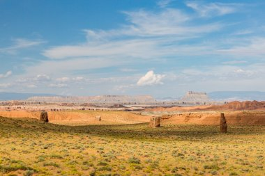 Field near Goblin Valley State Park
