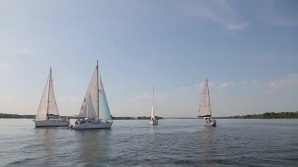 Bílé jachty na krásné jezero