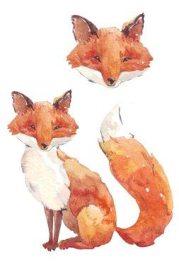 fox watercolor stylization