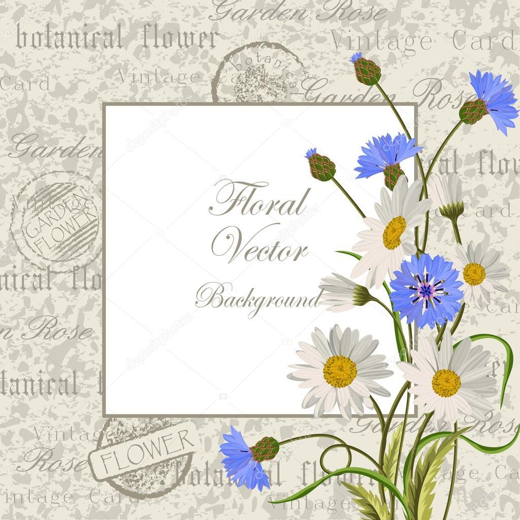Vector Flores Azul Rey Marco Vintage Con Flores Vector