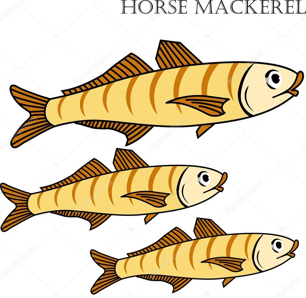 Ilustración de vector de dibujos animados de color de pescado jurel ...