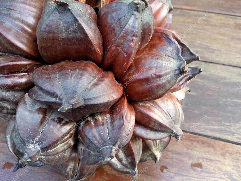 Nypa palm seed, Nypa, Atap palm, Nipa palm, Mangrove palm, Nypa fruticans Wurmb on wood table