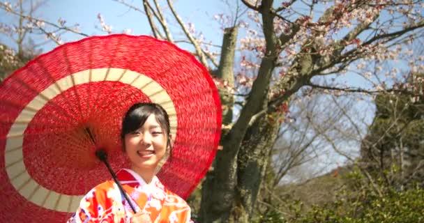 Japonské video staré dámy