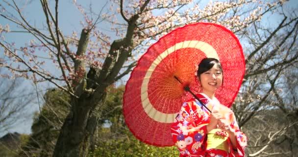 Krásná japonská dívka v kimonu s ukořistil před Sakura