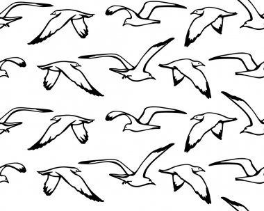 Sea gulls pattern