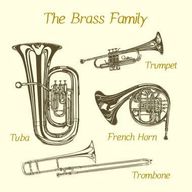 Brass family illustration