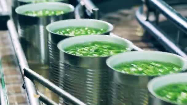 Verarbeitung landwirtschaftlicher Produkte, Förderband für Lebensmittelfabriken. Transport von Blechdosen mit grünen Erbsen in Flüssigkeit