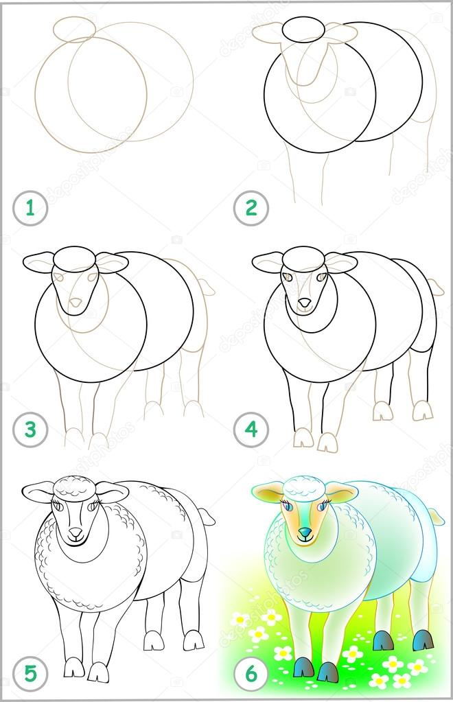 Page shows how to learn step by step to draw a sheep.
