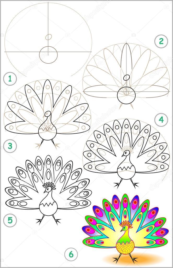 Nasıl Adım Adım Bir Tavus Kuşu çizmek öğrenmek Için Sayfa Gösterir