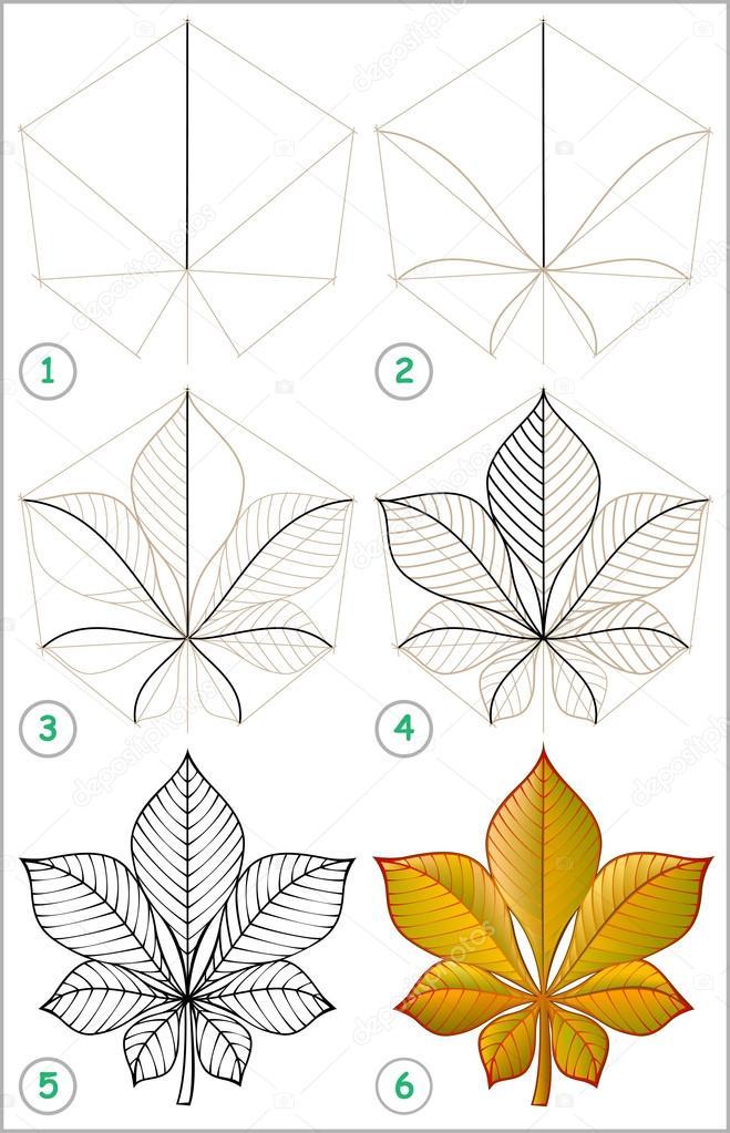 Nasıl Adım Adım Bir Kestane Yaprak çizmek öğrenmek Için Sayfa