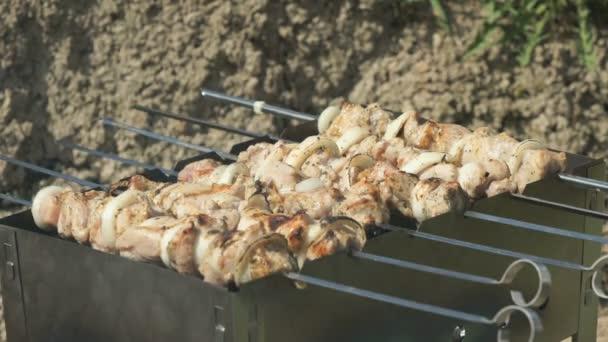 Smažení marinovaná masa na kovové špejle na uhlí