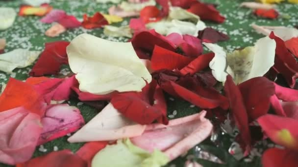 Wedding Tradition Rose Petals Scattered On Carpet Stock Video