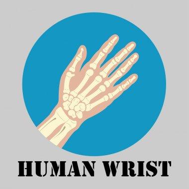 Human wrist emblem