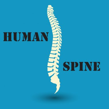 silhouette of a human spine