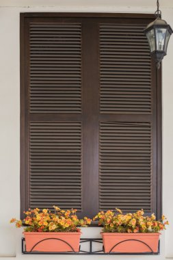Italian Window with Closed Wooden Shutters
