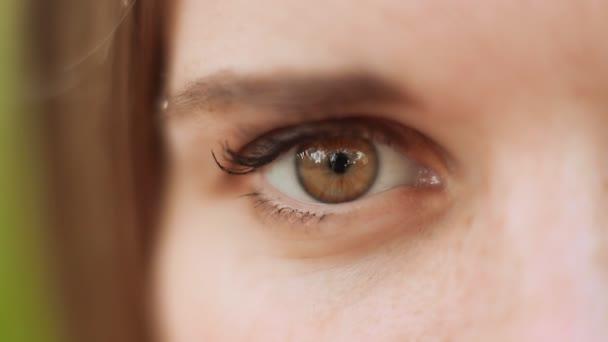 Zblízka pohled hnědá pravé oko ženy