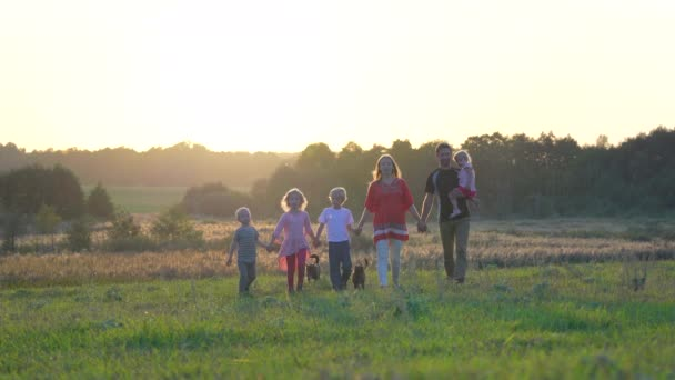 Velká přátelská rodina kráčí přes pole při západu slunce.