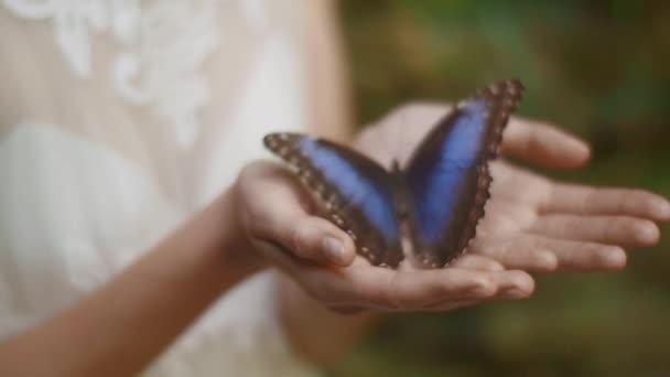 Dívka nevěsta ruce Butterfly venku