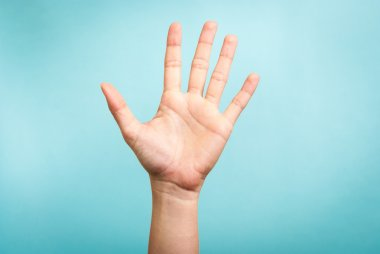 Woman hand up gesturing, high five, stop concept, on blue background