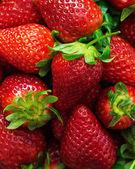 Fotografie červené zralé jahody