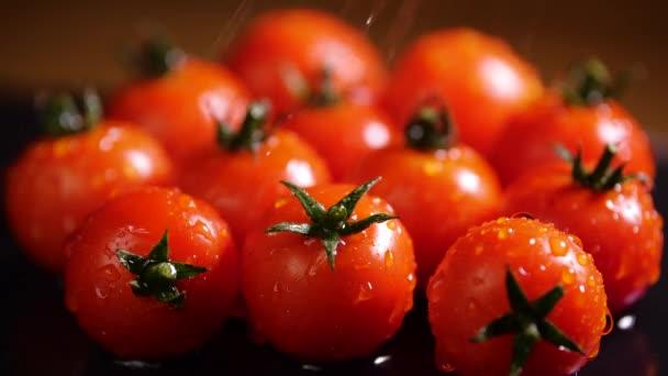 Rote Tomaten mit Wassertropfen, Macro 4k Video, Bio-Gemüsefutter, Biologische Ernte im Garten, Landwirtschaft, Landwirtschaft