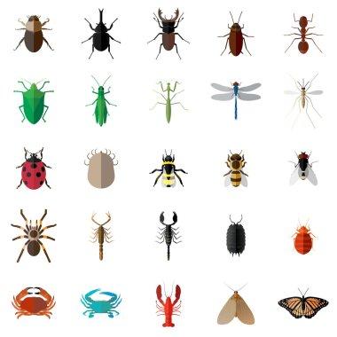 Vector flat long shadow 25 Bug Insect Set