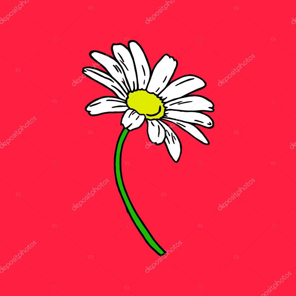 Daisy on a red background daisy logo daisy icon daisy art daisy daisy icon daisy art daisy nature daisy objects daisy poster daisy card daisy color daisy bouquet daisy cartoon daisy cute daisy flowers izmirmasajfo