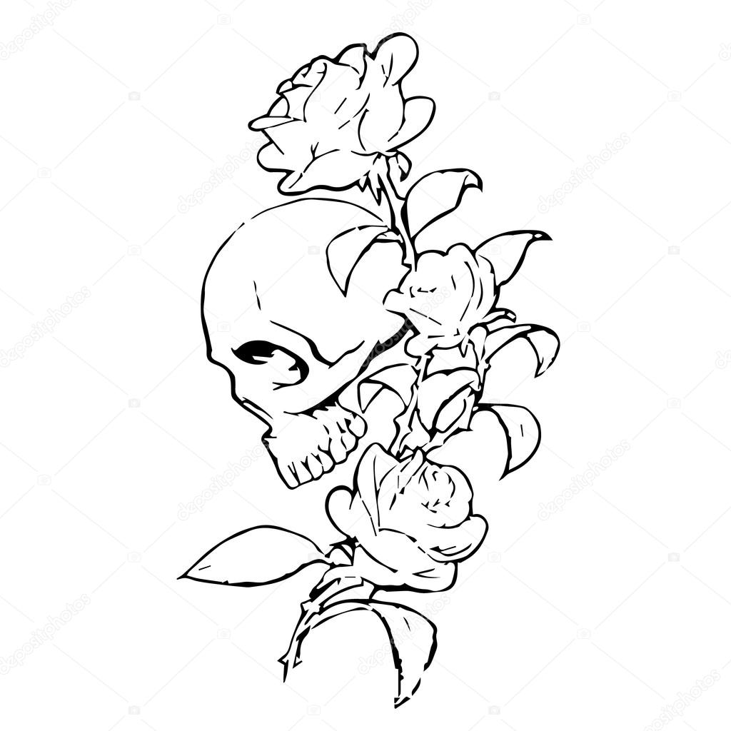Skull With Roses On A White Background Skull Icon Skull Logo