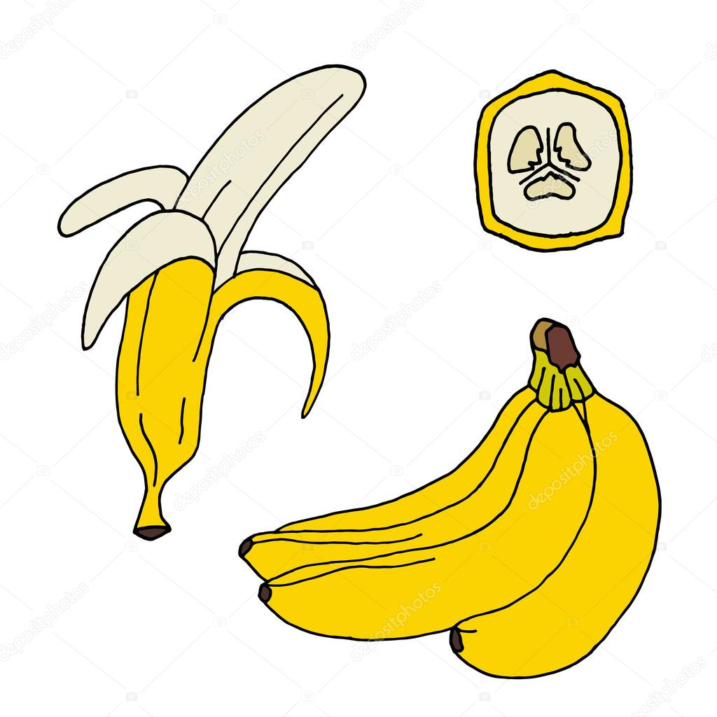 collection of bananas icon banana set banana design banana