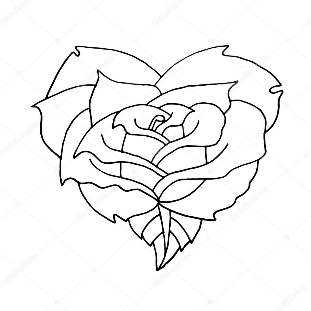Rose on a white background. Rose on a white background. Rose vector ...