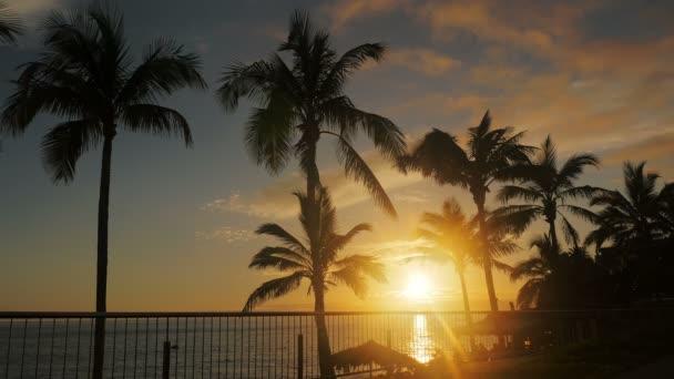Nádherný portrét romantický západ slunce mezi mořem a palmy v La Palma