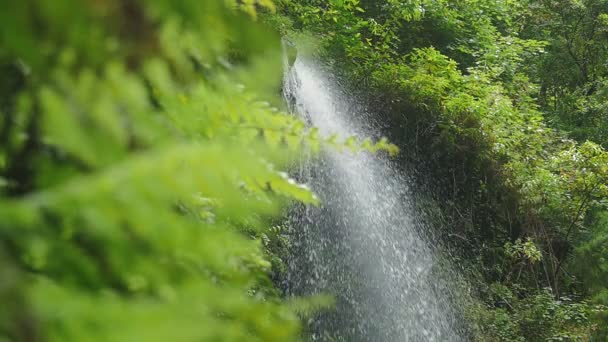 the waterfall  strikes loudly on the rocks in the forest