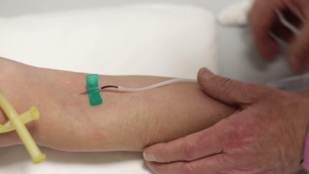 a vér-minta