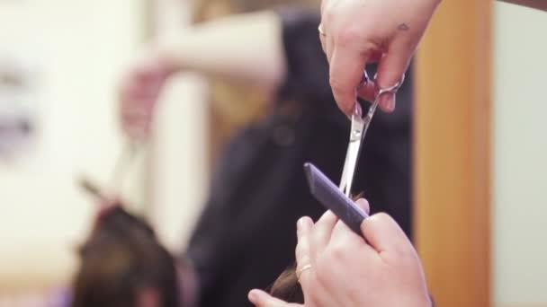 Haircutting közelről - fodrászat - fodrász