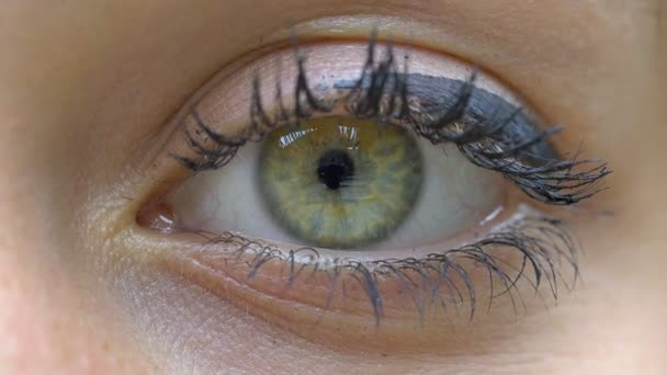 green eye of a young woman