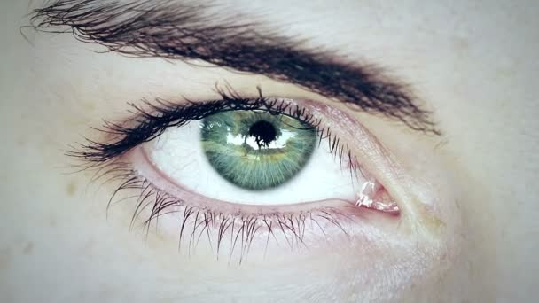 krásný zelený muž oko
