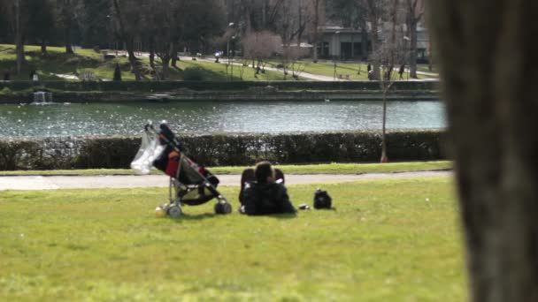 baby carriage in  park