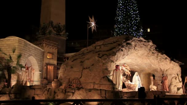 Nativity and Christmas tree in front of St. Peters Basilica