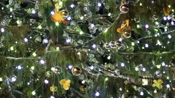 schöne Weihnachtsbaum — Stockvideo © videodream #99454662
